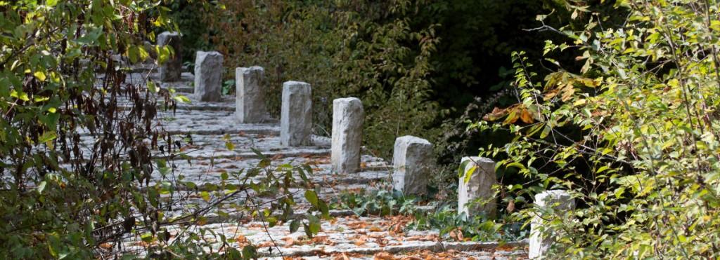 5. Συρράκο (Άγιος Γεώργιος) – Δάσος Μπάτζας (Πουλιάνα – Κουιάσα) Καλαρρύτες