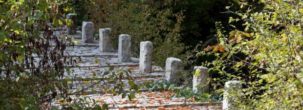 05. Συρράκο (Άγιος Γεώργιος) – Δάσος Μπάτζας (Πουλιάνα – Κουιάσα) Καλαρρύτες