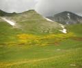 26. Χαλίκι – θέση Βερλίγκα – Κορυφή Τσουκαρέλλα (Περιστέρι)